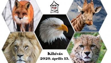 animals-762447_1280_szerk2